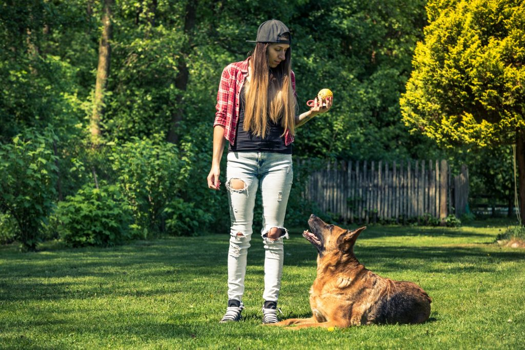 Authentic casual woman teaching dog obedience